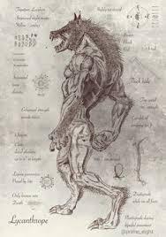 vitruvian werewolf