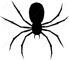 halloween spider background 5757937 one arachnid isolated on white background stock vector