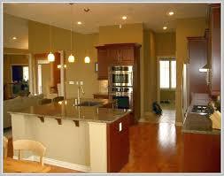 Mini Pendant Lights Over Kitchen Island Home Design Ideas