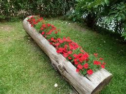 Home Design Garden Architecture Blog Magazine Hollowed Log Planter Home Design Garden U0026 Architecture Blog