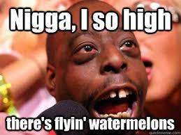 Funny Nigga Memes - nigga i so high there s flyin watermelons high ass nigger