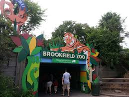 brookfield zoo the swamp glct mapio net brookfield zoo map map