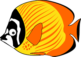 fish cartoon images best car 2017