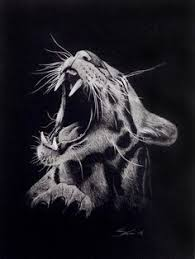 white charcoal sketch by mealieart com black paper art