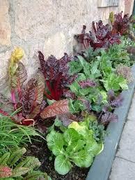 garden design ideas for small spaces edible color gorgeous