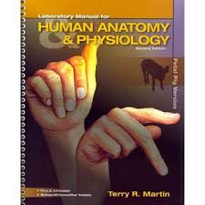 Pearson Anatomy And Physiology Lab Manual Buy Human Anatomy U0026amp Physiology Cat Version Masteringa U0026amp P