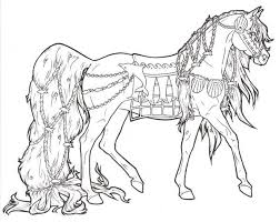 454 coloring pages horses unicorns zebras images