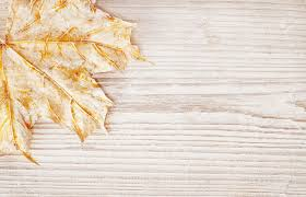 wooden board wood background texture and leaf autumn white wooden board