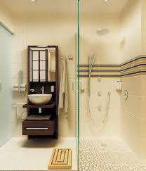 Safari Bathroom Ideas Bathroom White Fiberglass Tub Shower With Grab Bar With Bathtub