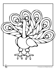 the 25 best peacock coloring pages ideas on pinterest