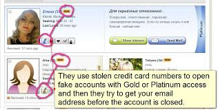 Seeking Cupid How I Searched For My And Found Scammers On Russian Cupid