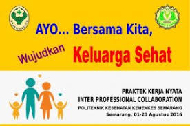 praktek kerja nyata inter profesional collaboration pkn ipc 2016
