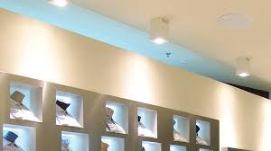 Hanging Ceiling Speakers by Professional Series