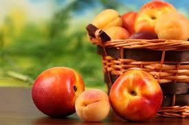peach wallpaper qygjxz