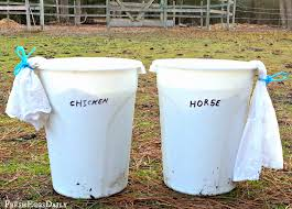 how to brew chicken or horse manure fertilizer tea for your