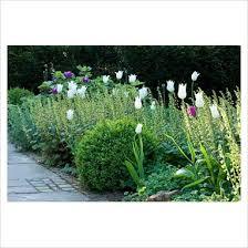 71 best corner garden ideas images on pinterest corner garden