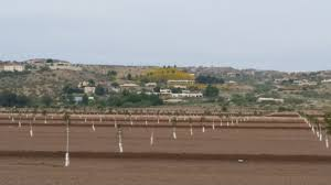 Southwest Landscape Design by Landscape Design In The Desert Southwest Ruminations Ideas And