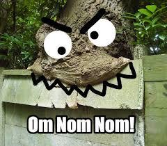 Nom Nom Nom Meme - image 26379 om nom nom nom know your meme