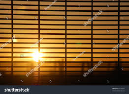 rising sun behind window blinds stock photo 43199860 shutterstock