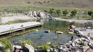 Natural Swimming Pool Natural Swimming Pool Construction Part 1 Youtube