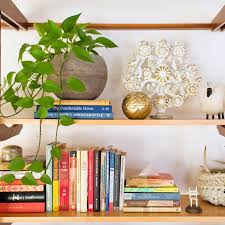 Best Low Light Indoor Plants by Best Houseplants For Low Light Popsugar Home Australia