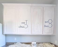 kitchen cabinet paint kit kenangorgun com