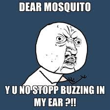 Mosquito Meme - dear mosquito y u no stopp buzzing in my ear create meme