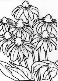 Flower Drawings Black And White - how to draw flowers flowers draw flowers and flower