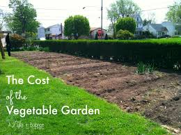 cost of the vegetable garden