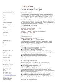 resume formatting software junior web developer resume sle 68 images self employed