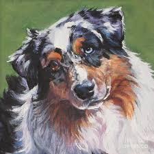 australian shepherd teeth australian shepherd painting by lee ann shepard art dogs