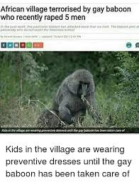 Baboon Meme - african village terrorised by gay baboon who recently raped 5 men