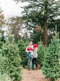 santa cruz christmas tree farm family lifestyle portraits