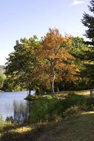 fall foliage trips to take on the east coast this season