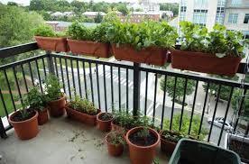balcony vegetable garden ideas u2014 home design and decor the