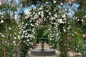 Rose Garden Layout by 100 Rose Garden Layout Gardens U0026 Landscapes George