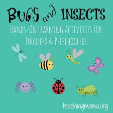 bugs u0026 insects theme teaching mama