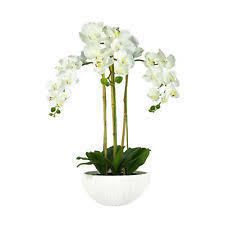 Fake Orchids Orchid Potted Houseplants Flowers Ebay