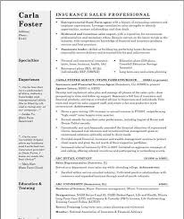 Best Resume Header F by 8 Best Resume Images On Pinterest Child Care Corporate Identity