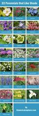 25 beautiful small flower gardens ideas on pinterest small