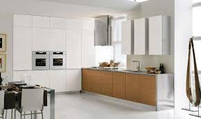 Modern Kitchen Cabinets Design Ideas Photo Of Nifty Modern Custom - Modern kitchen cabinet designs