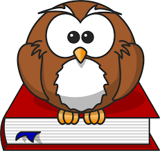 owl sitting on a book education