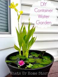 How To Make A Koi Pond In Your Backyard by How To Set Up Mini Water Gardens On Your Deck Whats Ur Home Story