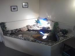 Indoor Pond by Fish Tank Turtle Tank Setup Ideas Unique Image Inspirations Best