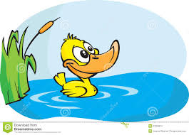 duck clipart pond cartoon pencil and in color duck clipart pond