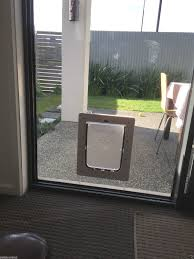 small pet cat flap u0026 dog door for glass security door u0026 security