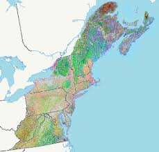 northeastern cus map terrestrial habitat map for the northeast us and atlantic canada