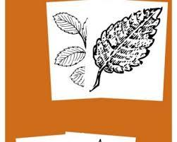 5 free positive parenting ebooks tots family parenting kids