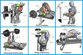 Tricep Close Grip Bench Press Best Exercise For Tricep Mass How To Get Big Triceps All