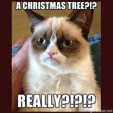 Grumpy Cat Memes Christmas - hate the holidays with the grumpy cat internet meme socialeyezer